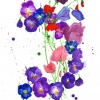 flowers_small