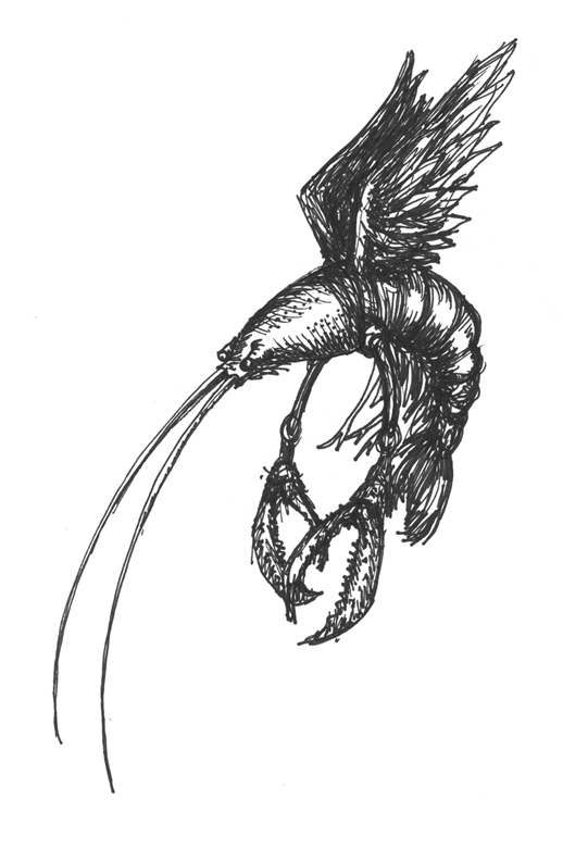 flying crayfish